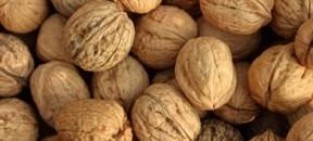 walnuts-inshell