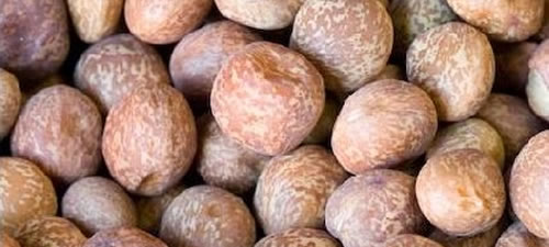peas-maple