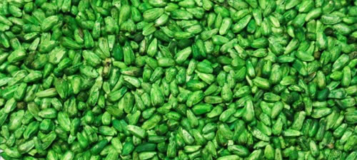 safflower-green
